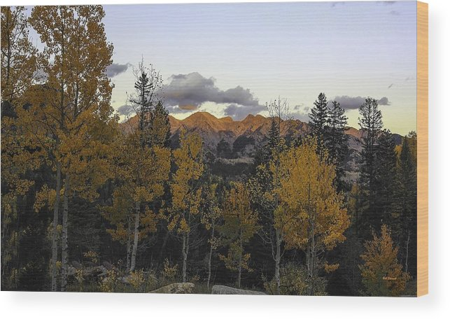 Landscape Wood Print featuring the photograph Autumn Sunset by Bill Sherrell
