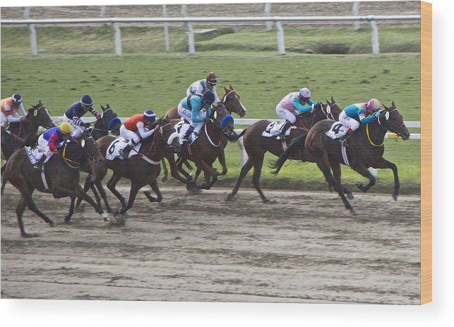 Sports Wood Print featuring the photograph Gran Premio Nacional Horse Racing In Buenos Aries by Venetia Featherstone-Witty