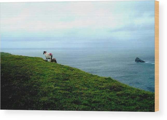 Landscape Wood Print featuring the photograph Ireland by Olga Breslav