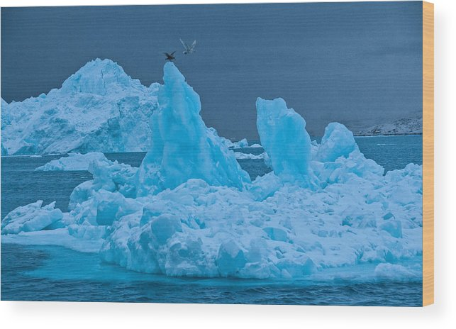 Greenland Wood Print featuring the photograph No Place Like Home by Jim Southwell
