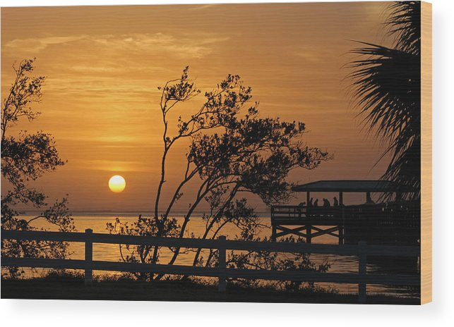 Sunrise Wood Print featuring the photograph Safety Harbor Sunrise by Cliff Cammarata