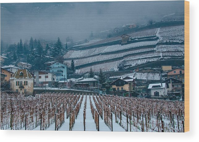 Italy Wood Print featuring the photograph Waiting For Spring by Jim Southwell
