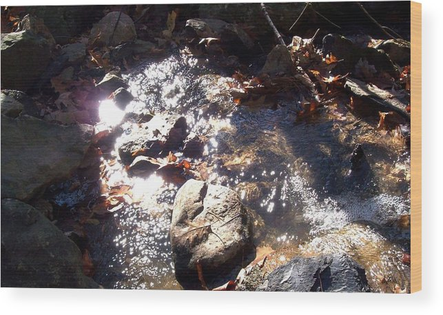 Landscape Wood Print featuring the photograph Brook by David Reese