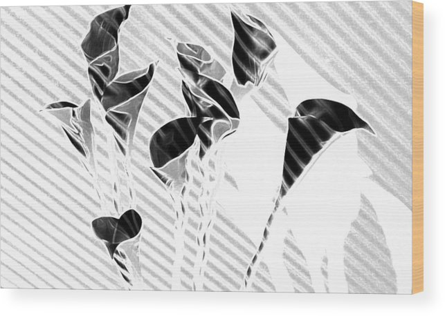 Flowers Wood Print featuring the painting Calla Lilies by Gary at TopPhotosI