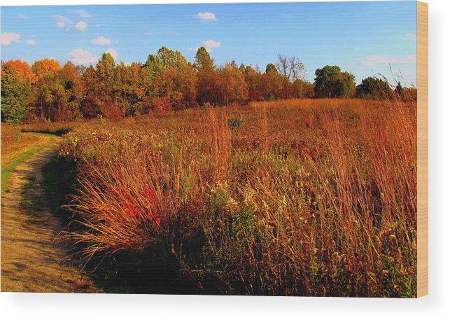 Autumn Wood Print featuring the painting Autumns Field by Scott Heaton