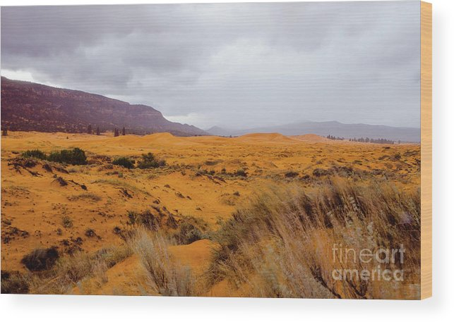 Paria Wood Print featuring the photograph Burnt Earth by Jerry Sellers