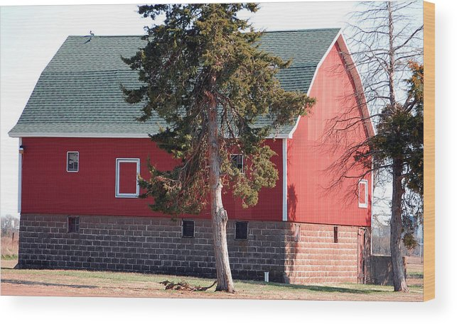 Barn Wood Print featuring the photograph Family Barn by Jame Hayes