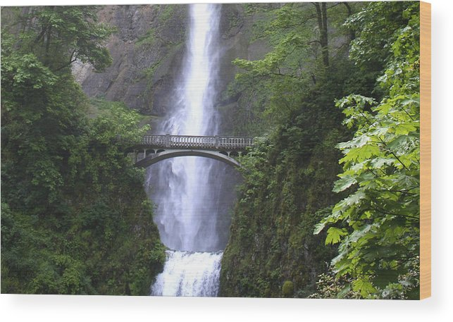 Waterfall Wood Print featuring the photograph Multnomah Falls Wf1051a by Mary Gaines