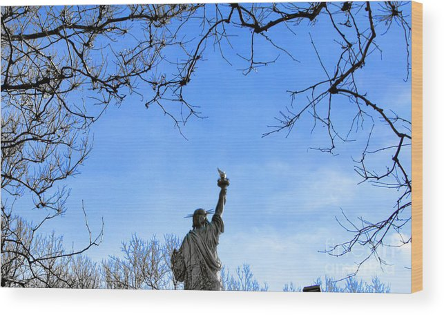Statue Of Liberty Wood Print featuring the photograph Statue Of Liberty Back View by Chuck Kuhn