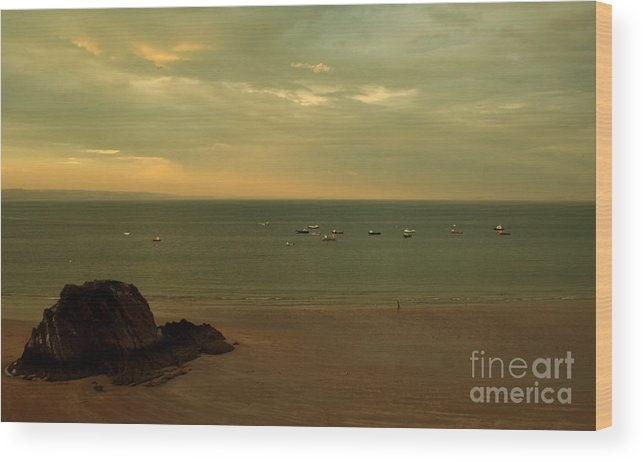 Pembrokeshire Wood Print featuring the photograph The Tortoise Rock by Angel Ciesniarska