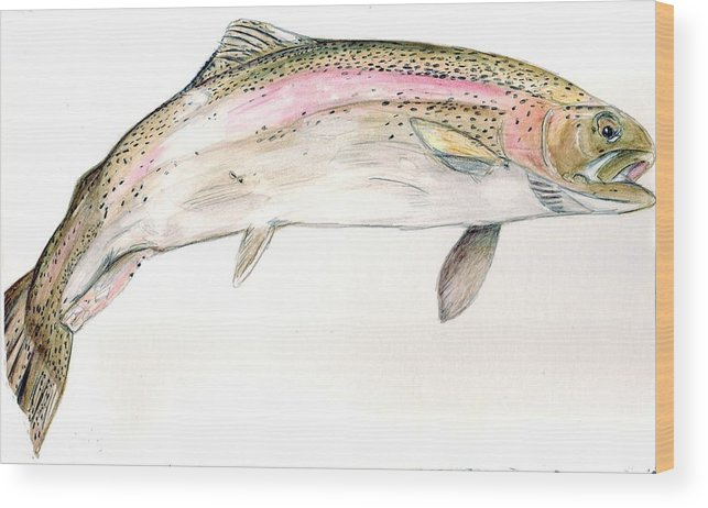 Trout Wood Print featuring the painting Trout by Debra Sandstrom