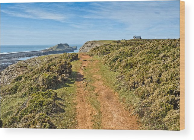 Gower Wood Print featuring the photograph Worms Head by Hazel Powell