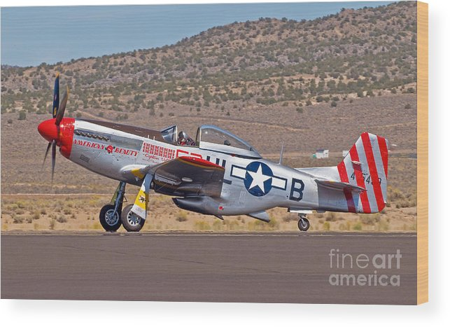 American Beauty Wood Print featuring the photograph American Beauty- P51 by Steve Rowland