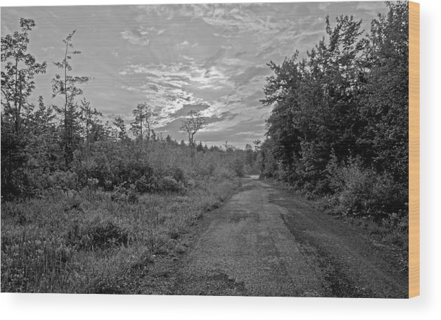 Environment Wood Print featuring the photograph Back Road At Sunset Pocono Mountains Pennsylvania by A Gurmankin