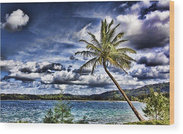 Hawaii Wood Print featuring the photograph Big Island Beaches V2 by Douglas Barnard