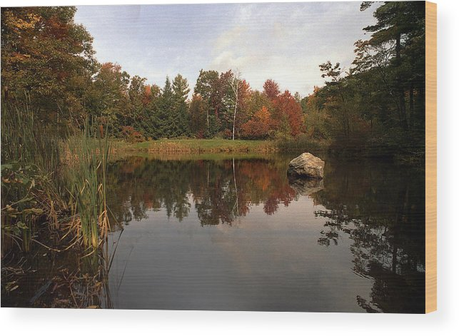 Fall Wood Print featuring the photograph Fall Pond by Skip Willits