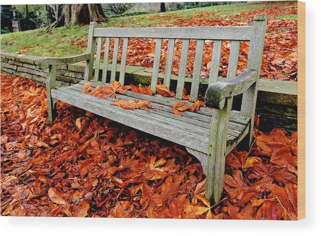 Old Wood Print featuring the photograph Fallen Bench by Dwight Pinkley