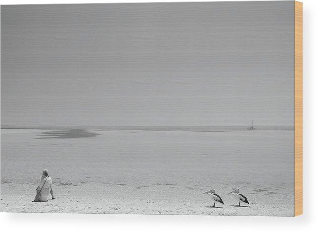 Beach Wood Print featuring the photograph Fishy, Fishy, Fishy! by Gloria Salgado Gispert