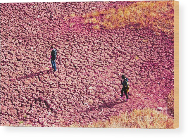 Purple Wood Print featuring the photograph Hiking On The Cracked Purple Earth by Lesley Nolan