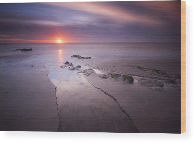 Canvas Wood Print featuring the photograph Low Tide At Glyne Gap by Mark Leader
