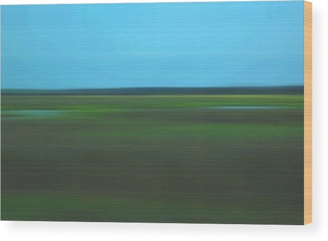 Abstract Wood Print featuring the photograph Marsh Blur by Suzanne Gaff