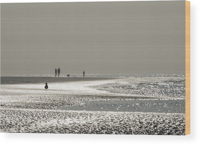 Seaside Wood Print featuring the photograph Quick Silver by Spikey Mouse Photography