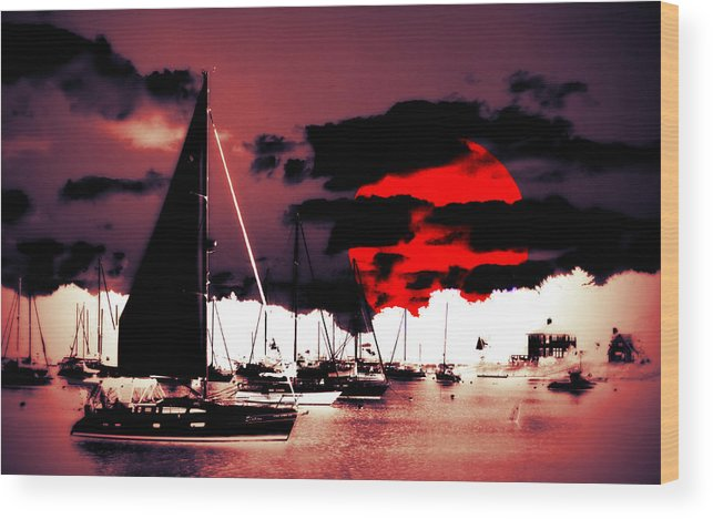 Sailboat Wood Print featuring the photograph Sailboats In The Marina Surreal 2 by Aurelio Zucco