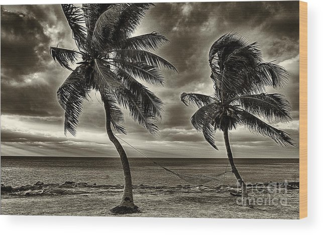 Keys Wood Print featuring the photograph Sepia Sunset by Bruce Bain