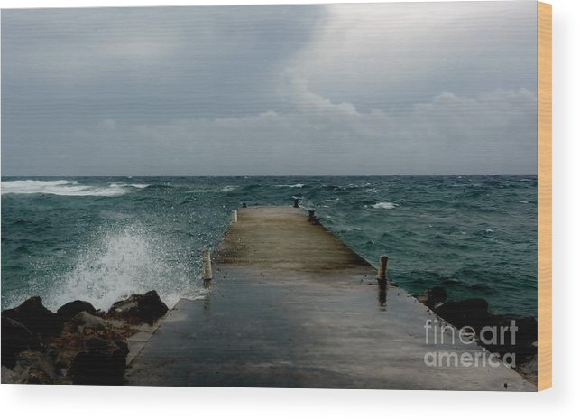 Color Wood Print featuring the photograph Spotts Landing by Amar Sheow