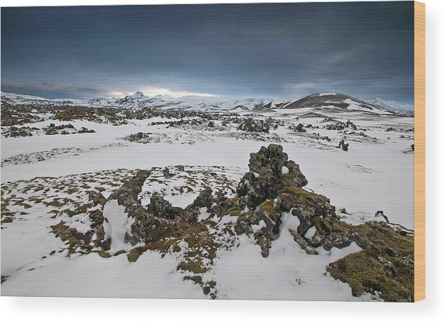 Iceland Wood Print featuring the photograph Study In Contrast by Jim Southwell
