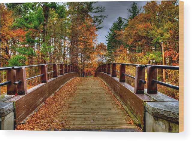 Bridge Wood Print featuring the photograph Wooden Bridge by Craig Incardone