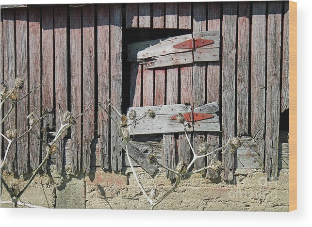 Barn Wood Print featuring the photograph Side Door by Steve Gass