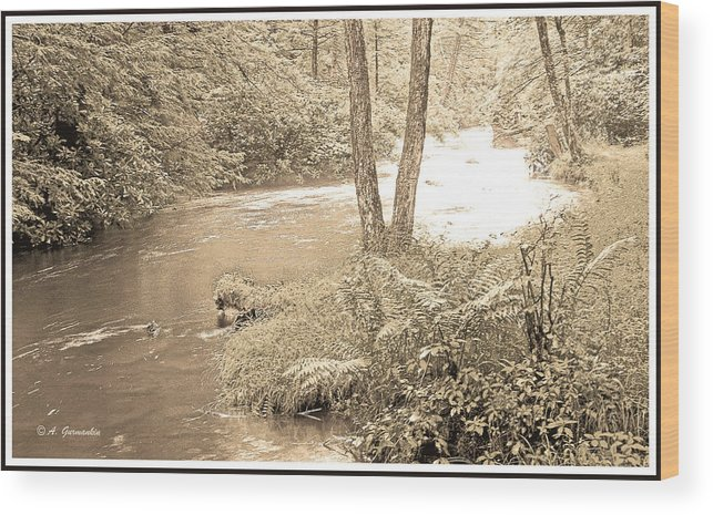 Mud Run Wood Print featuring the photograph Mud Run Pocono Mountain Stream Pennsylvania by A Gurmankin