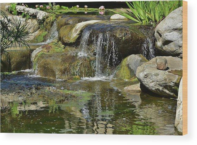 7 Lily Pond Waterfall I Wood Print