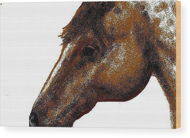 Horse Wood Print featuring the digital art Appaloosa Eye by Carole Boyd