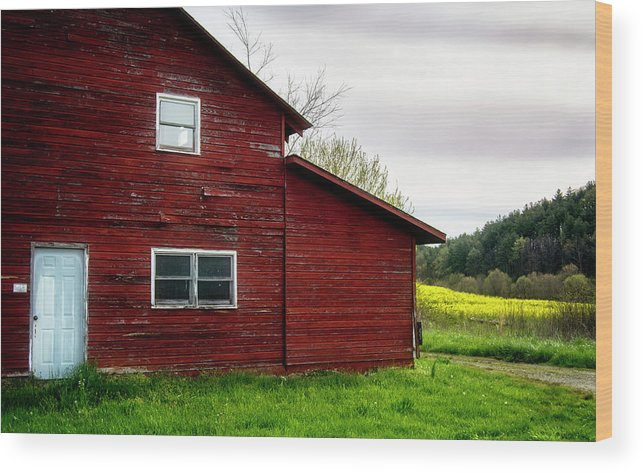Barn Wood Print featuring the photograph Barn And Wildflowers by Greg Mimbs
