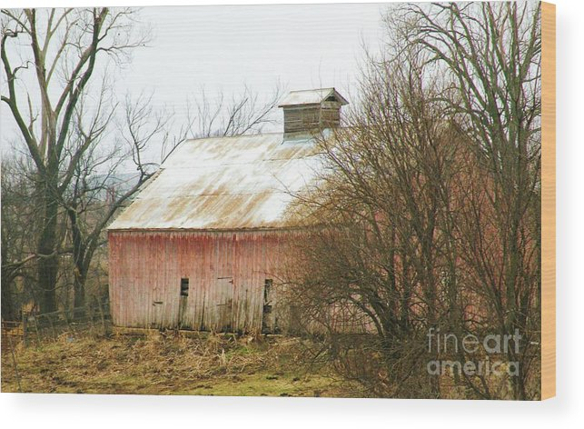 Barn Wood Print featuring the photograph Barns Of Otoe County II by Christine Belt