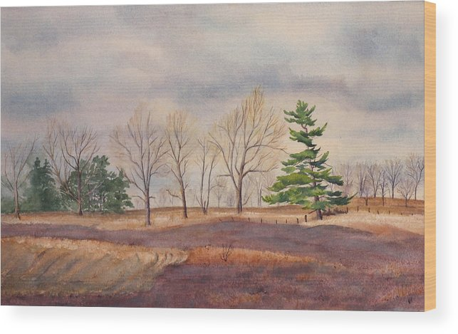 Shadows Wood Print featuring the painting Fall Tapestry by Debbie Homewood