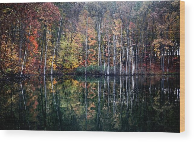 Fall Wood Print featuring the photograph November Ripples by Chris Fleming
