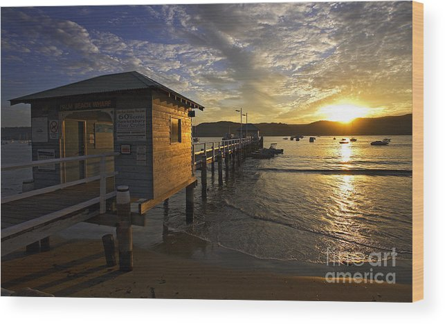Palm Beach Sydney Australia Sunset Water Pittwater Wood Print featuring the photograph Palm Beach Sunset by Sheila Smart Fine Art Photography