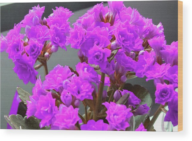 Flowers Wood Print featuring the photograph Purple Flowers by Donna Tanael