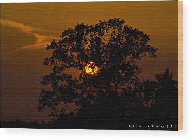 Nature Wood Print featuring the photograph Serengeti by Jonathan Ellis Keys