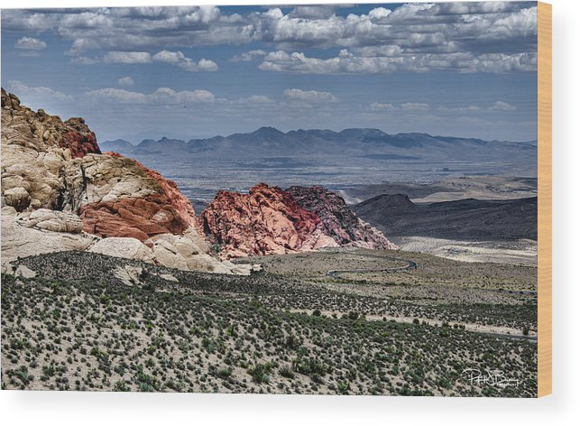 Desert Wood Print featuring the photograph Valley Of Fire Iv by Patrick Boening