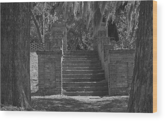 Black And White Wood Print featuring the photograph Wandering Steps by Gregory Letts