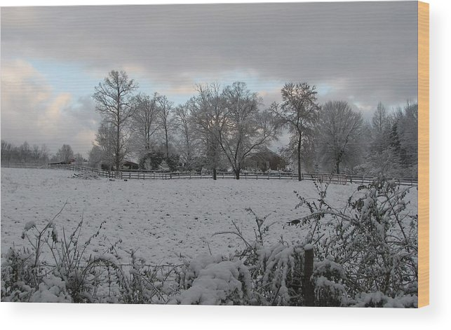 Landscape Wood Print featuring the photograph Winter Morning by Rose Cottage Ltd