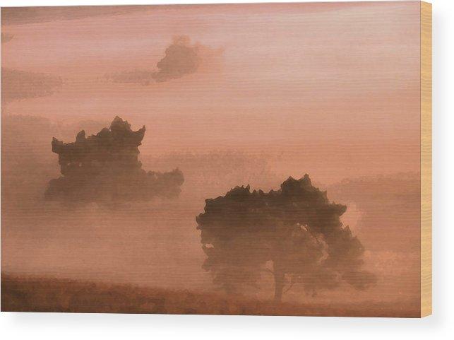 Heath Wood Print featuring the digital art Heathland by Ronald Jansen