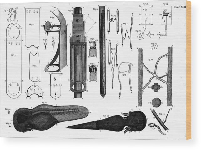 1800 Wood Print featuring the photograph Leeuwenhoek: Microscope by Granger