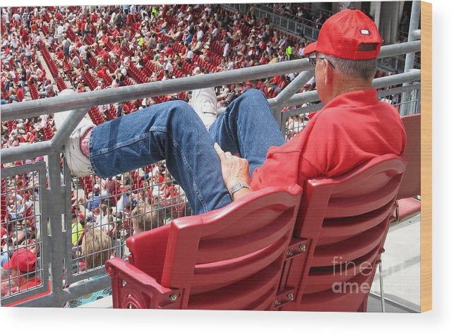 Baseball Wood Print featuring the photograph Above The Crowd by Ann Horn