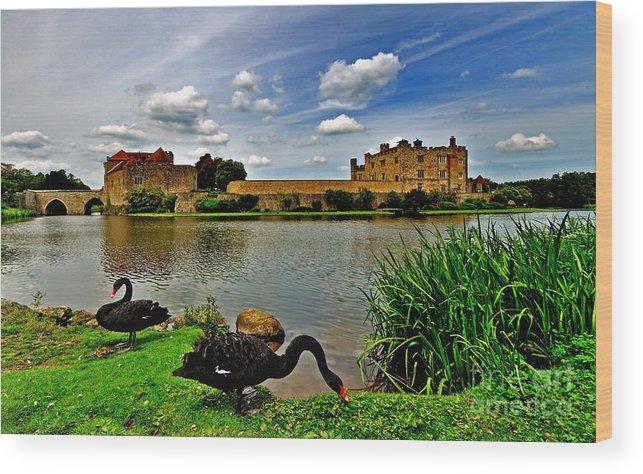 Leeds Castle Wood Print featuring the photograph Black Swans At Leeds Castle II by Bel Menpes