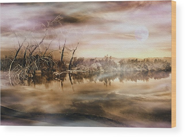Salton Sea Wood Print featuring the photograph Dusk At The Pond by Wayne Wood